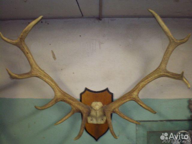 Подставка под рога оленя