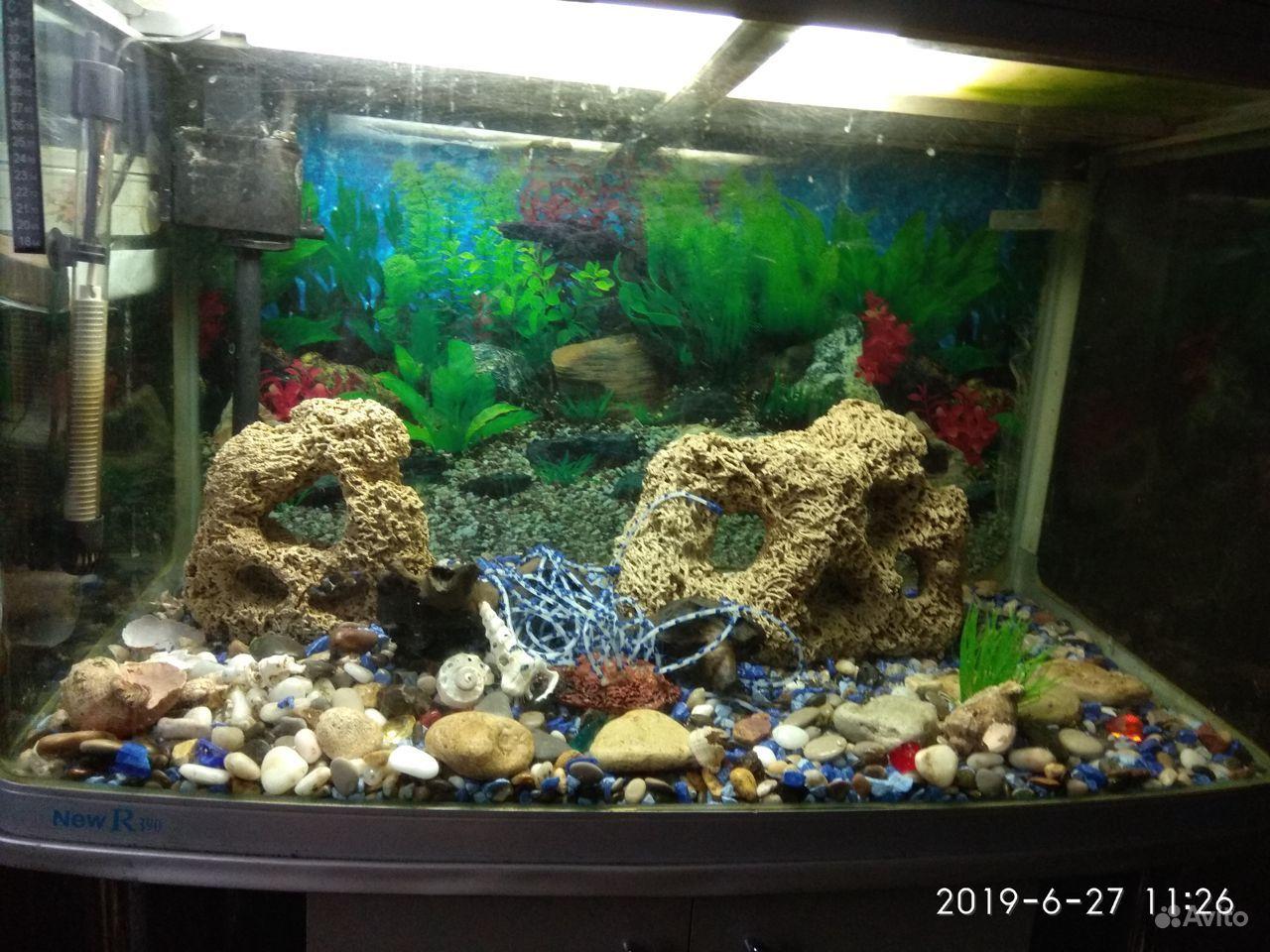 Продается аквариум купить на Зозу.ру - фотография № 4