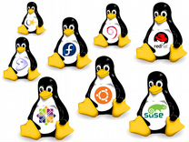 Установка Windows / Linux и Программ