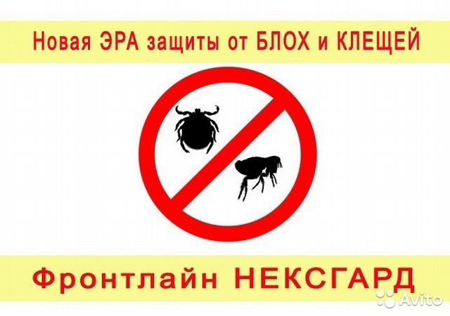новосибирск средство от паразитов