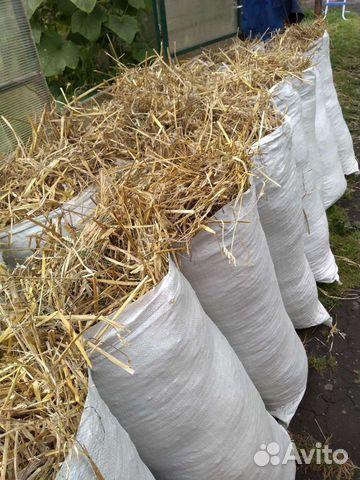 Солома для собак и сено в мешках  89011213736 купить 1