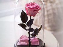 Роза в колбе в Курске
